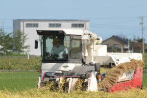田中農産の美味しいお米